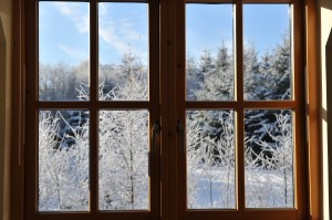 Energy efficient windows Longmont